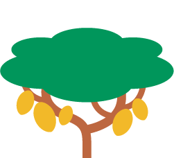 kakao-baum-treedom
